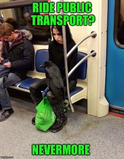Nevermore | RIDE PUBLIC TRANSPORT? NEVERMORE | image tagged in memes,nevermore | made w/ Imgflip meme maker