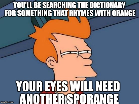 Futurama Fry Meme | YOU'LL BE SEARCHING THE DICTIONARY FOR SOMETHING THAT RHYMES WITH ORANGE YOUR EYES WILL NEED ANOTHER SPORANGE | image tagged in memes,futurama fry | made w/ Imgflip meme maker