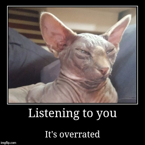 We're you saying something? | Listening to you | It's overrated | image tagged in funny,demotivationals,not listening,insults,cats | made w/ Imgflip demotivational maker