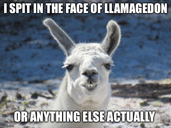 Derp | I SPIT IN THE FACE OF LLAMAGEDON OR ANYTHING ELSE ACTUALLY | image tagged in derp | made w/ Imgflip meme maker
