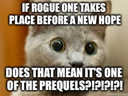 IF ROGUE ONE TAKES PLACE BEFORE A NEW HOPE DOES THAT MEAN IT'S ONE OF THE PREQUELS?!?!?!?! | image tagged in curious cat | made w/ Imgflip meme maker