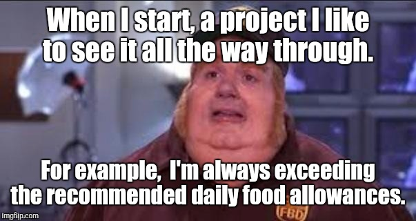 Fat | When I start, a project I like to see it all the way through. For example,  I'm always exceeding the recommended daily food allowances. | image tagged in fat | made w/ Imgflip meme maker