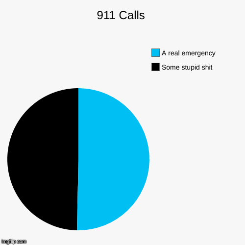 911 Calls | Some stupid shit, A real emergency | image tagged in funny,pie charts | made w/ Imgflip pie chart maker