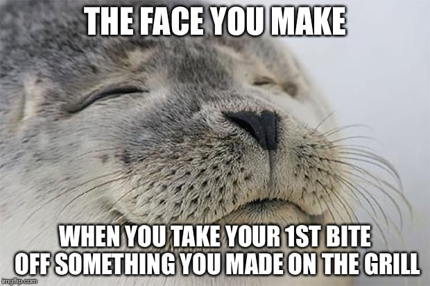 Satisfied Seal Meme | THE FACE YOU MAKE WHEN YOU TAKE YOUR 1ST BITE OFF SOMETHING YOU MADE ON THE GRILL | image tagged in memes,satisfied seal | made w/ Imgflip meme maker
