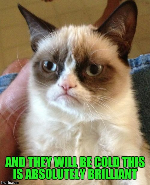Grumpy Cat Meme | AND THEY WILL BE COLD THIS IS ABSOLUTELY BRILLIANT | image tagged in memes,grumpy cat | made w/ Imgflip meme maker