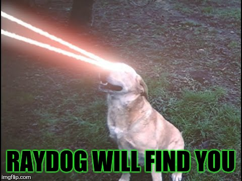 RAYDOG WILL FIND YOU | made w/ Imgflip meme maker