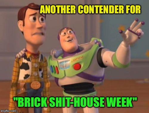"X, X Everywhere Meme | ANOTHER CONTENDER FOR ""BRICK SHIT-HOUSE WEEK"" 