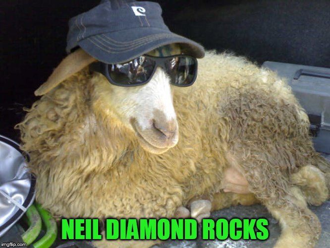 NEIL DIAMOND ROCKS | made w/ Imgflip meme maker