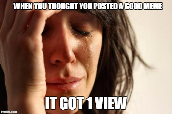 First World Problems Meme | WHEN YOU THOUGHT YOU POSTED A GOOD MEME IT GOT 1 VIEW | image tagged in memes,first world problems | made w/ Imgflip meme maker