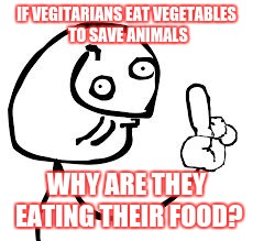 IF VEGITARIANS EAT VEGETABLES TO SAVE ANIMALS WHY ARE THEY EATING THEIR FOOD? | image tagged in derp know it all | made w/ Imgflip meme maker