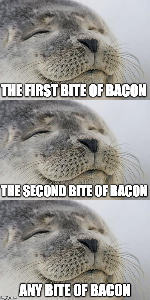 It's that good. (Remember bacon week is May 22-26th) |  THE FIRST BITE OF BACON; THE SECOND BITE OF BACON; ANY BITE OF BACON | image tagged in bacon week is coming,bacon week,satisfied seal,seal | made w/ Imgflip meme maker