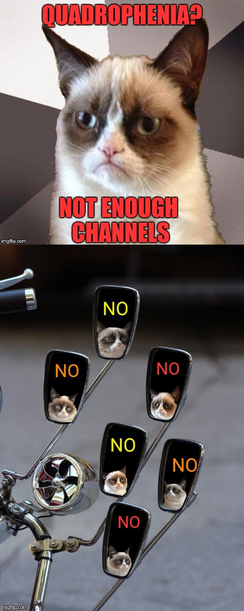Musically Malicious Grumpy Cat | QUADROPHENIA? NOT ENOUGH CHANNELS | image tagged in memes,musically malicious grumpy cat,the who,quadrophenia,no,grumpy cat | made w/ Imgflip meme maker
