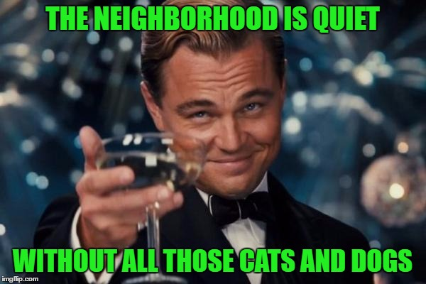 Leonardo Dicaprio Cheers Meme | THE NEIGHBORHOOD IS QUIET WITHOUT ALL THOSE CATS AND DOGS | image tagged in memes,leonardo dicaprio cheers | made w/ Imgflip meme maker