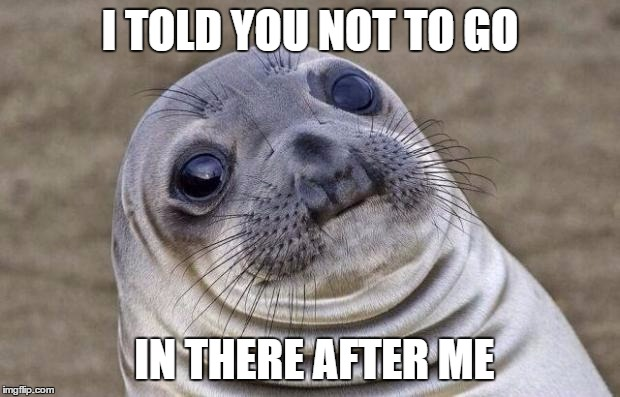 Awkward Moment Sealion Meme | I TOLD YOU NOT TO GO IN THERE AFTER ME | image tagged in memes,awkward moment sealion | made w/ Imgflip meme maker