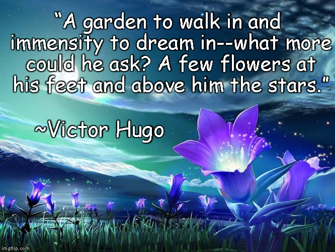 "Flowers Under Stars | ""A garden to walk in and immensity to dream in--what more could he ask? A few flowers at his feet and above him the stars."" ~Victor Hugo 