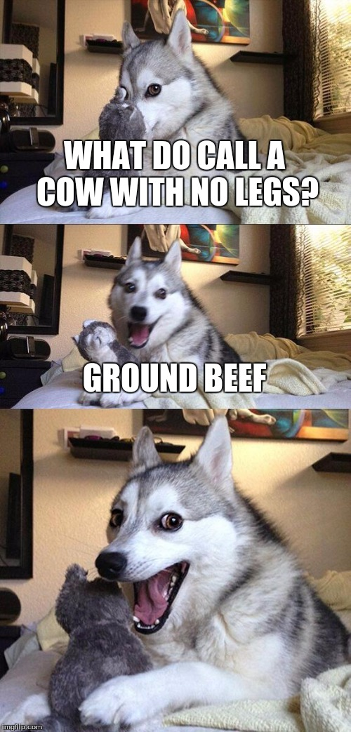 A Classic pun. | WHAT DO CALL A COW WITH NO LEGS? GROUND BEEF | image tagged in memes,bad pun dog | made w/ Imgflip meme maker