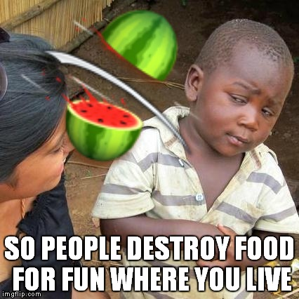 SO PEOPLE DESTROY FOOD FOR FUN WHERE YOU LIVE | made w/ Imgflip meme maker