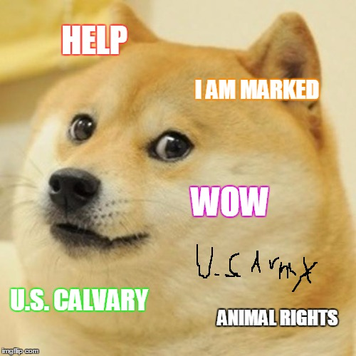 Doge Meme | HELP I AM MARKED WOW U.S. CALVARY ANIMAL RIGHTS | image tagged in memes,doge | made w/ Imgflip meme maker