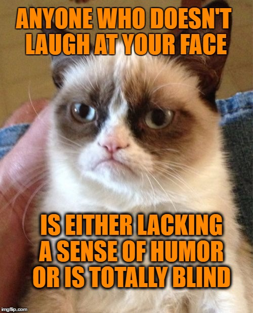 Grumpy Cat Meme | ANYONE WHO DOESN'T LAUGH AT YOUR FACE IS EITHER LACKING A SENSE OF HUMOR OR IS TOTALLY BLIND | image tagged in memes,grumpy cat | made w/ Imgflip meme maker