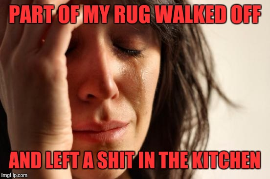 First World Problems Meme | PART OF MY RUG WALKED OFF AND LEFT A SHIT IN THE KITCHEN | image tagged in memes,first world problems | made w/ Imgflip meme maker