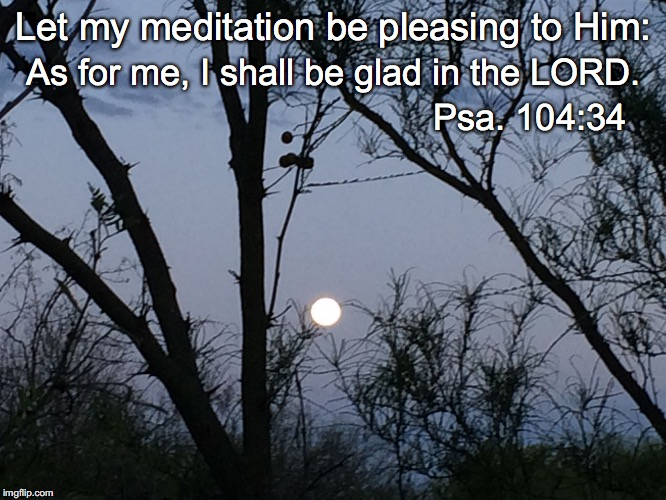 Let my meditation be pleasing to Him: As for me, I shall be glad in the LORD. Psa. 104:34 | image tagged in meditation | made w/ Imgflip meme maker