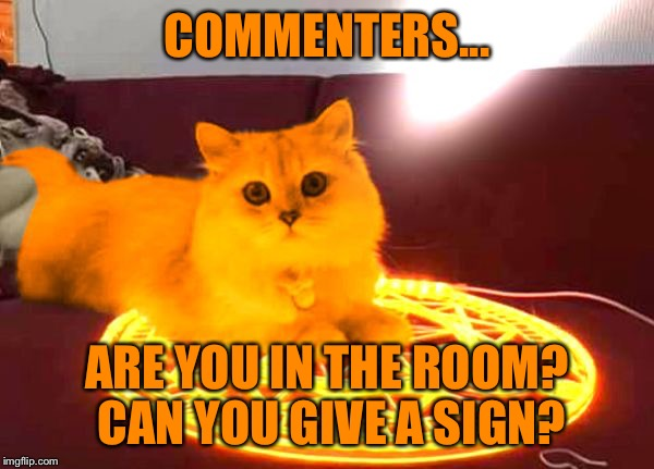 RayCat Powers | COMMENTERS... ARE YOU IN THE ROOM? CAN YOU GIVE A SIGN? | image tagged in raycat powers | made w/ Imgflip meme maker