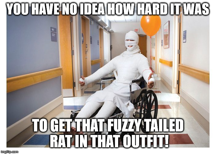 YOU HAVE NO IDEA HOW HARD IT WAS TO GET THAT FUZZY TAILED RAT IN THAT OUTFIT! | made w/ Imgflip meme maker