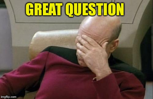 Captain Picard Facepalm Meme | GREAT QUESTION | image tagged in memes,captain picard facepalm | made w/ Imgflip meme maker