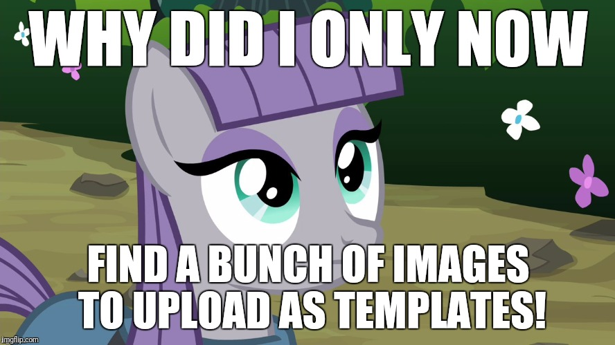 I should have looked around my tablet more! Well, at least this means I have more memes I can make! | WHY DID I ONLY NOW FIND A BUNCH OF IMAGES TO UPLOAD AS TEMPLATES! | image tagged in maud is interested,memes,my little pony meme week,xanderbrony | made w/ Imgflip meme maker