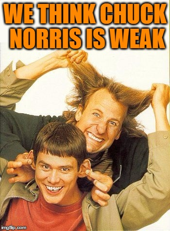 DUMB and dumber | WE THINK CHUCK NORRIS IS WEAK | image tagged in dumb and dumber | made w/ Imgflip meme maker