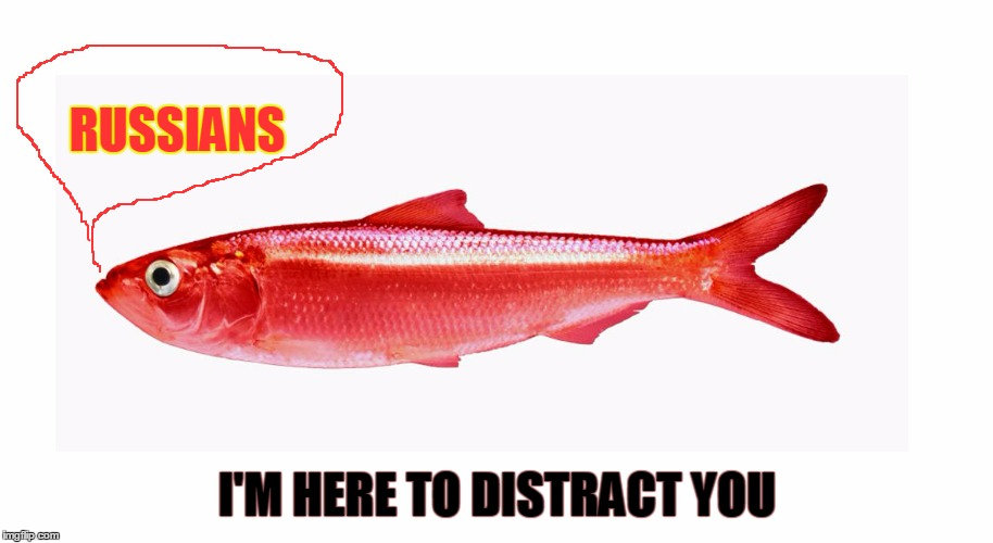 Red Herring  | RUSSIANS I'M HERE TO DISTRACT YOU | image tagged in red herring | made w/ Imgflip meme maker