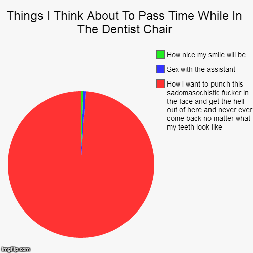 Things I Think About To Pass Time While In The Dentist Chair | How I want to punch this sadomasochistic f**ker in the face and get the hell  | image tagged in funny,pie charts | made w/ Imgflip pie chart maker