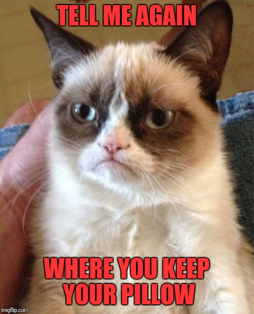 Grumpy Cat Meme | TELL ME AGAIN WHERE YOU KEEP YOUR PILLOW | image tagged in memes,grumpy cat | made w/ Imgflip meme maker