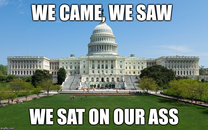 capitol hill | WE CAME, WE SAW WE SAT ON OUR ASS | image tagged in capitol hill | made w/ Imgflip meme maker