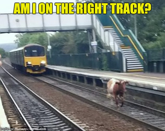 AM I ON THE RIGHT TRACK? | made w/ Imgflip meme maker