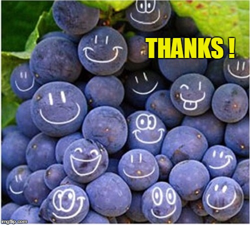 THANKS ! | made w/ Imgflip meme maker