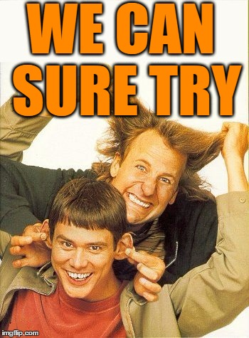 DUMB and dumber | WE CAN SURE TRY | image tagged in dumb and dumber | made w/ Imgflip meme maker