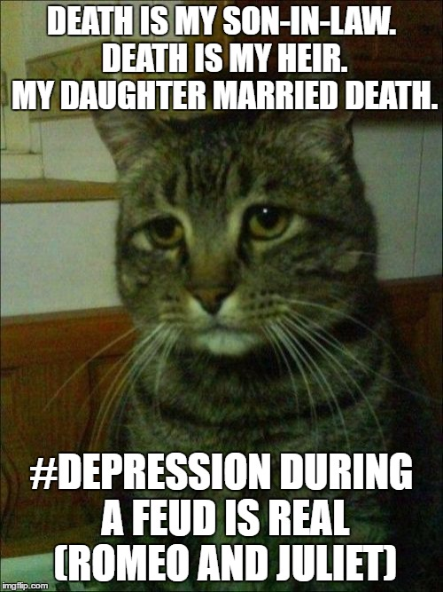 Depressed Cat |  DEATH IS MY SON-IN-LAW. DEATH IS MY HEIR. MY DAUGHTER MARRIED DEATH. #DEPRESSION DURING A FEUD IS REAL (ROMEO AND JULIET) | image tagged in memes,depressed cat | made w/ Imgflip meme maker