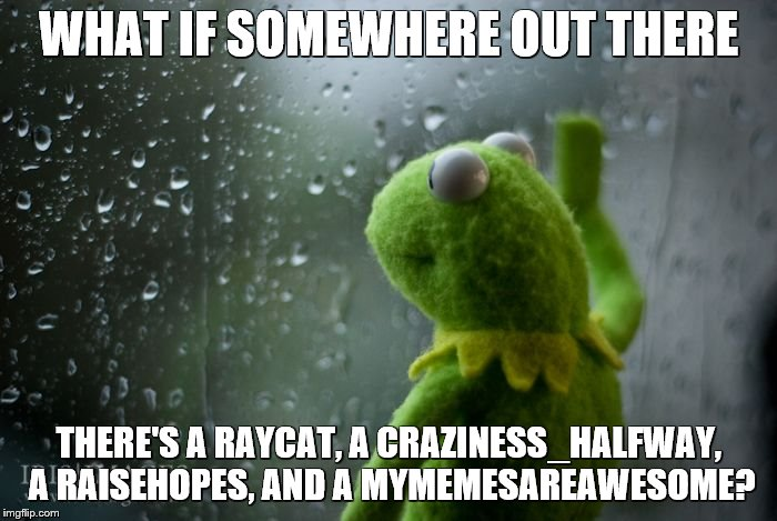 maybe... | WHAT IF SOMEWHERE OUT THERE THERE'S A RAYCAT, A CRAZINESS_HALFWAY, A RAISEHOPES, AND A MYMEMESAREAWESOME? | image tagged in kermit window | made w/ Imgflip meme maker