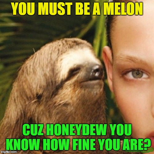 Whisper Sloth Fruity Pick Up Lines (Fruit Week - A 123Guy Event - May 8-14) | YOU MUST BE A MELON CUZ HONEYDEW YOU KNOW HOW FINE YOU ARE? | image tagged in sloth whisper,memes,fruit week,pick up lines | made w/ Imgflip meme maker
