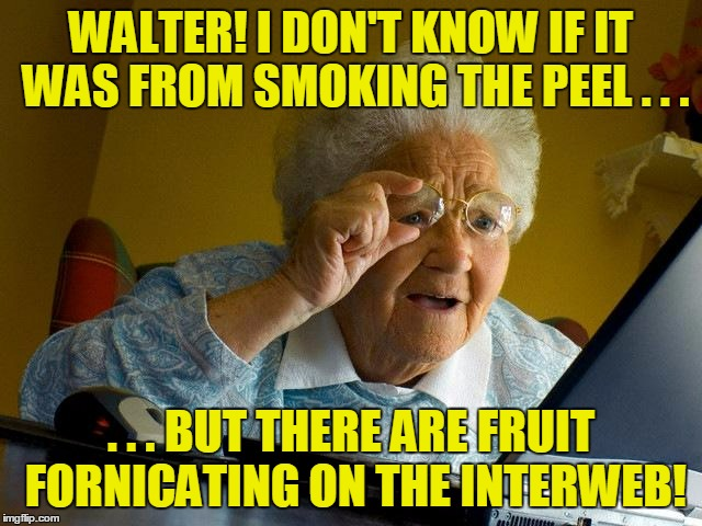 Grandma Finds The Internet Meme | WALTER! I DON'T KNOW IF IT WAS FROM SMOKING THE PEEL . . . . . . BUT THERE ARE FRUIT FORNICATING ON THE INTERWEB! | image tagged in memes,grandma finds the internet | made w/ Imgflip meme maker