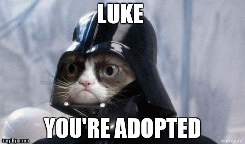 You were never my son Luke | LUKE YOU'RE ADOPTED | image tagged in memes,grumpy cat star wars,grumpy cat,funny,star wars | made w/ Imgflip meme maker