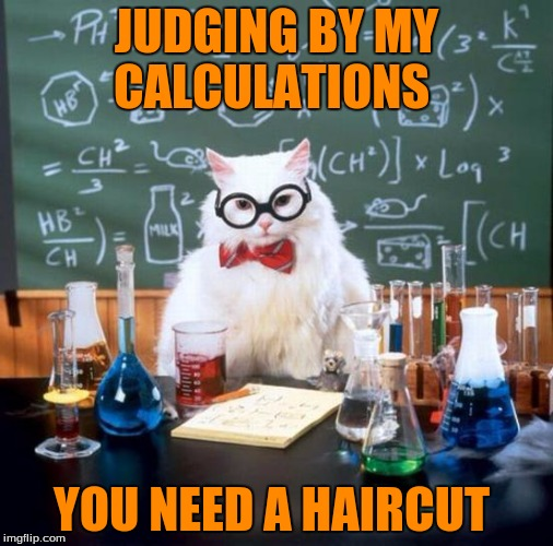 JUDGING BY MY CALCULATIONS YOU NEED A HAIRCUT | made w/ Imgflip meme maker