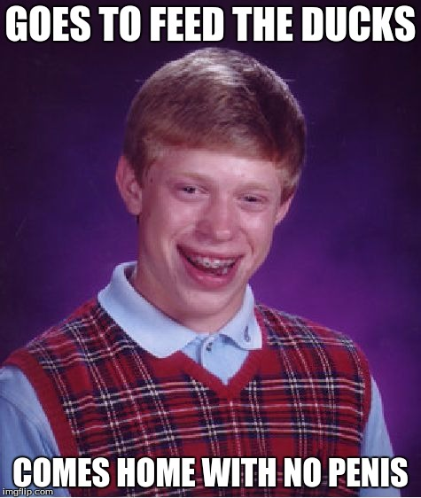 Bad Luck Brian Meme | GOES TO FEED THE DUCKS COMES HOME WITH NO P**IS | image tagged in memes,bad luck brian | made w/ Imgflip meme maker