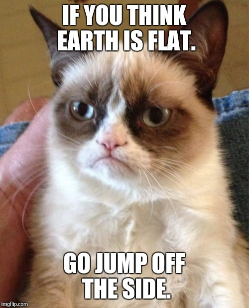 I'm serious. | IF YOU THINK EARTH IS FLAT. GO JUMP OFF THE SIDE. | image tagged in memes,grumpy cat | made w/ Imgflip meme maker
