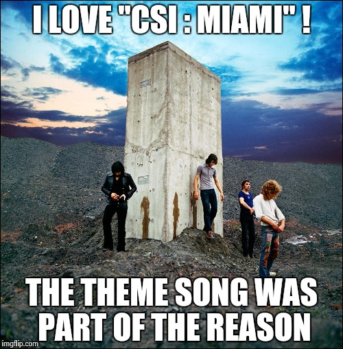 "Who's Next | I LOVE ""CSI : MIAMI"" ! THE THEME SONG WAS PART OF THE REASON 