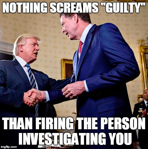 "NOTHING SCREAMS ""GUILTY"" THAN FIRING THE PERSON INVESTIGATING YOU 