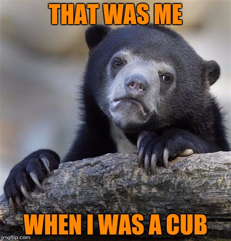 Confession Bear Meme | THAT WAS ME WHEN I WAS A CUB | image tagged in memes,confession bear | made w/ Imgflip meme maker