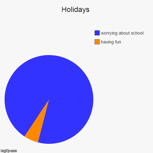 Holidays | having fun, worrying about school | image tagged in funny,pie charts | made w/ Imgflip pie chart maker