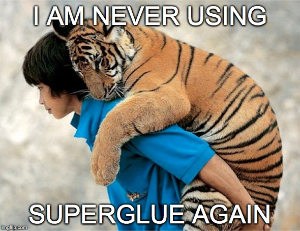 third world problems are always bigger | I AM NEVER USING SUPERGLUE AGAIN | image tagged in people and animals,superglue | made w/ Imgflip meme maker